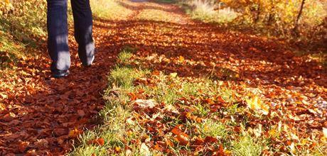Warming autumnal hipflask whiskies