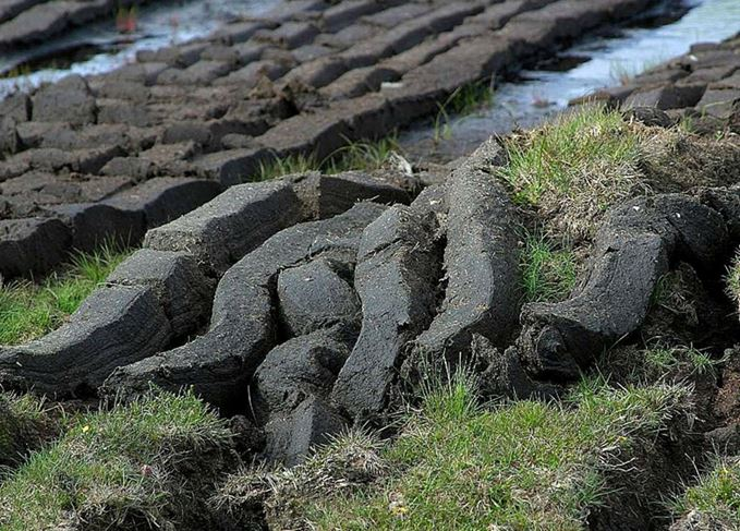 How does peat make whisky taste… peaty? | Scotch Whisky