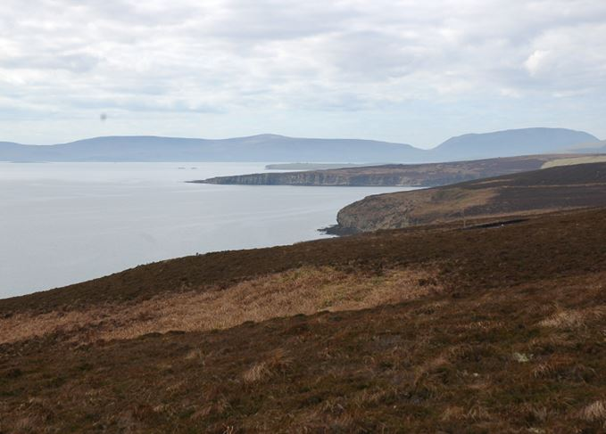 Islay peat