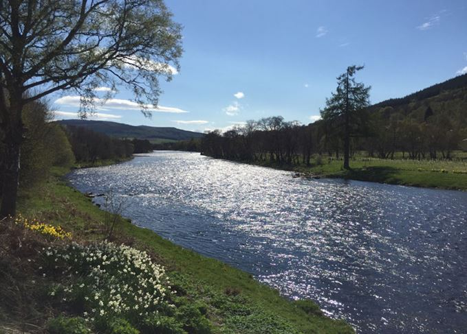 River Spey in the spring sunshine