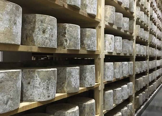 Westcombe Dairy