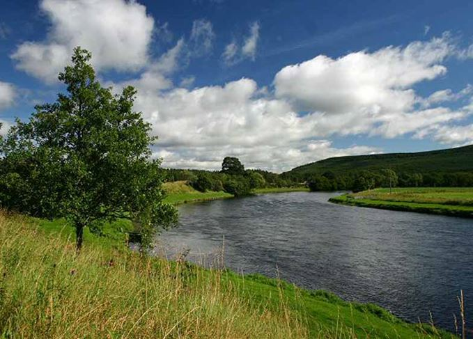 Banks of the River Spey