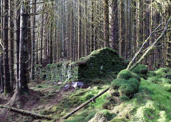 Wee Bruach Caoruinn ruins